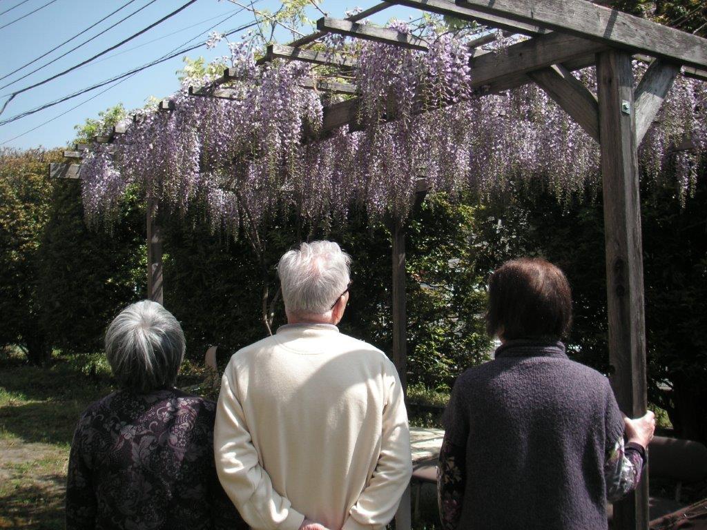 http://www.hokutokai.or.jp/clover/006.jpg