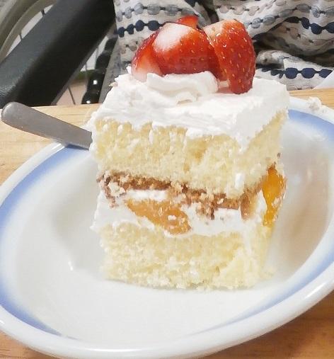 http://www.hokutokai.or.jp/clover/P2150051.jpg